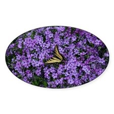 Spring Butterfly Visitor Decal