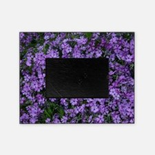 Spring Butterfly Visitor Picture Frame