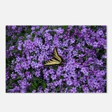 Spring Butterfly Visitor Postcards (Package of 8)