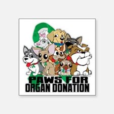 """Paws for Organ Donation Square Sticker 3"""" x 3"""""""