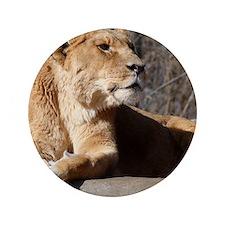 "lioness 3.5"" Button"