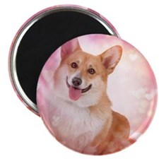 Corgi with hearts Magnet