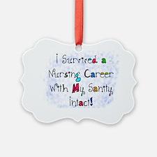 i survived nursing career PILLOW Ornament