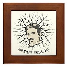 team-tesla-LTT Framed Tile