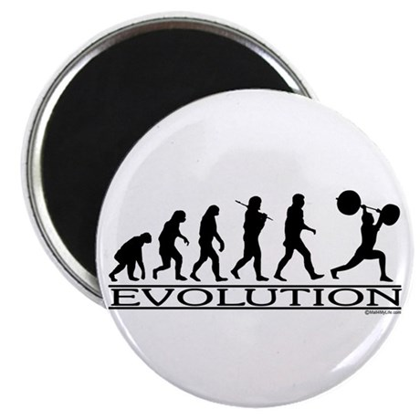 Evolution (Man Weightlifting) Magnet
