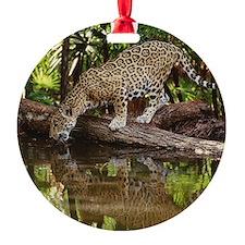 COOL CAT Ornament