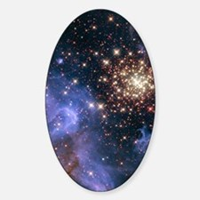 Celestial Fireworks 2 Sticker (Oval)