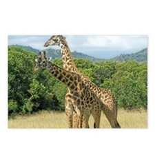 Mara Giraffes Postcards (Package of 8)