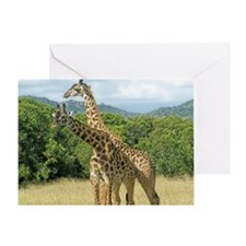 Mara Giraffes Greeting Card