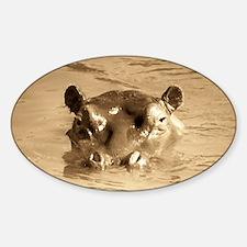 River Hippo Sticker (Oval)