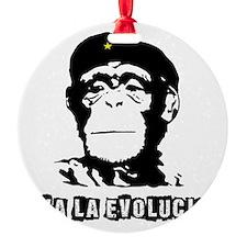 Human Evolution Round Ornament