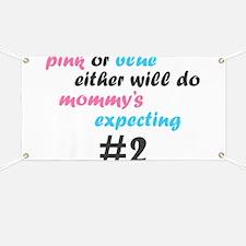 Pink or Blue Banner