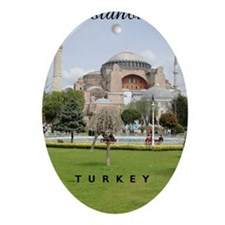 Istanbul_2.337x4.9_iPhone5Case_Hagia Oval Ornament