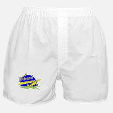 PIETENPOL Boxer Shorts
