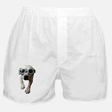 Sassy Becca Boxer Shorts