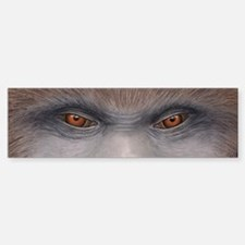 Sasquatch Eyes Bumper Bumper Sticker