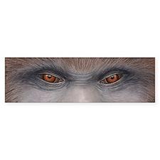 Sasquatch Eyes Bumper Sticker