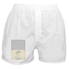 11603241-d2fb-4e9b-ac1a-af0c8aced69a_ Boxer Shorts