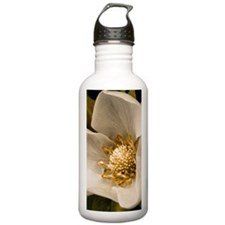 Strawberry flower Water Bottle