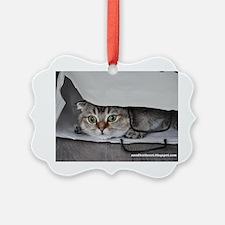 Noodles the cat bag - postcard (8 Ornament