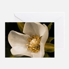 Strawberry flower Greeting Card