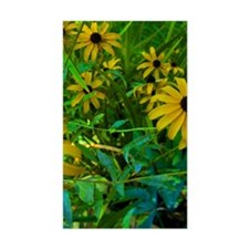 Black Eyed Susans 35x21 Wall P Decal