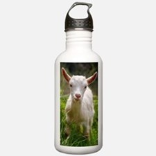 Baby goat Water Bottle