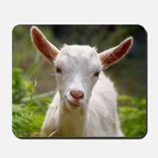 Baby goat Mousepad