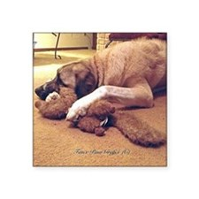 """Dog with toy 1 Square Sticker 3"""" x 3"""""""