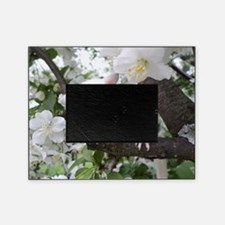 Think Spring! Picture Frame