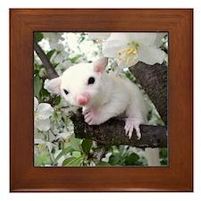 Think Spring! Framed Tile