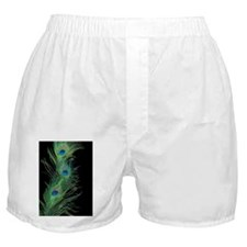 Black and Green Peacock Boxer Shorts