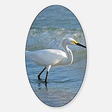 Snowy egret Sticker (Oval)