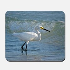 Snowy egret on the beach Mousepad