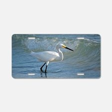 Snowy egret Aluminum License Plate