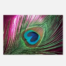 Magenta Peacock Postcards (Package of 8)