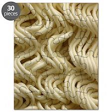 Ramen Noodle Puzzle