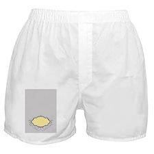 f4fd9945-3a32-40c2-bc9c-32da6a152dc2_ Boxer Shorts
