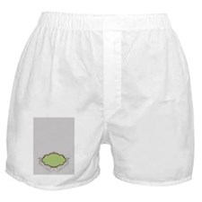 365eb706-d105-4b5f-95c9-b9024df953c5_ Boxer Shorts