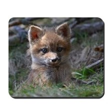 baby fox Mousepad