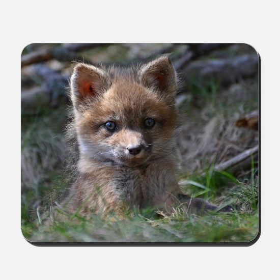 baby fox Mousepad