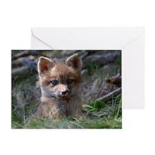 baby fox Greeting Card