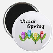 Think Spring GPS Magnet