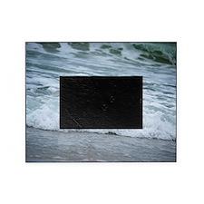 Born of sea-foam Picture Frame