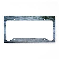 Born of sea-foam License Plate Holder