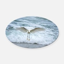 Born of sea-foam Oval Car Magnet
