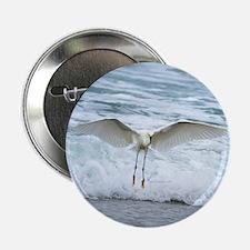 """Born of sea-foam 2.25"""" Button"""