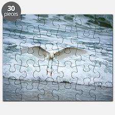 Born of sea-foam Puzzle