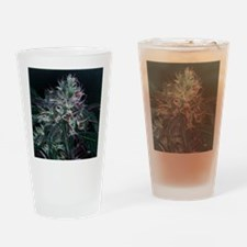 Skunkola Drinking Glass