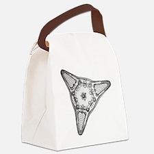 Diatom Canvas Lunch Bag
